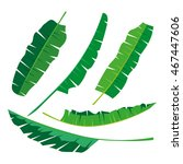 tropical banana leaves... | Shutterstock .eps vector #467447606