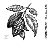 cocoa beans illustration.... | Shutterstock .eps vector #467562128