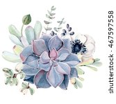 watercolor succulent... | Shutterstock . vector #467597558