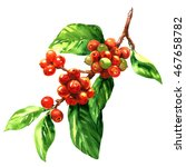 red coffee arabica beans on... | Shutterstock . vector #467658782