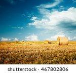 beautiful summer farm scenery...