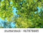 fresh green | Shutterstock . vector #467878685