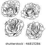 set of black and white rose...   Shutterstock .eps vector #46815286