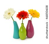 Flowers In Vases Isolated On...