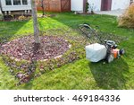 Grass Bagging In Fall In The...