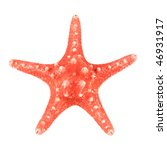 Red Starfish Isolated On White...