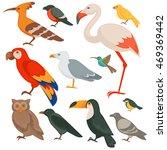 colorful birds set  parrot ... | Shutterstock .eps vector #469369442