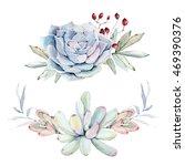 watercolor succulent... | Shutterstock . vector #469390376