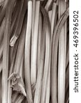 rhubarb fruit and vegetable... | Shutterstock . vector #469396502