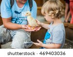 toddler boy play with the... | Shutterstock . vector #469403036