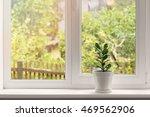crassula flower in pot on... | Shutterstock . vector #469562906