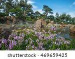 asian garden with flowers in... | Shutterstock . vector #469659425