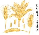 wheat ears grain hand draw... | Shutterstock .eps vector #469819502