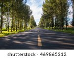 Spring Forest Road