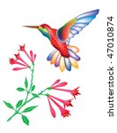 hummingbird and flowers | Shutterstock .eps vector #47010874