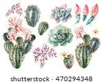 watercolor set with succulents... | Shutterstock . vector #470294348