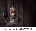 Tabby Cat Sitting Wine Barrel - Fine Art prints