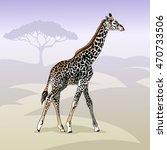 giraffe walking on savannah....