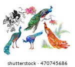 watercolor pattern on white... | Shutterstock . vector #470745686