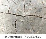 wood | Shutterstock . vector #470817692