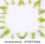 lemon green golden pine's... | Shutterstock . vector #470873366