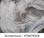 Texture Bark Of The Dead Tree