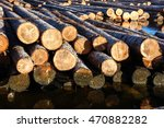 Logs Crossing The River On The...