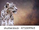 drawing snow leopard portrait... | Shutterstock . vector #471009965