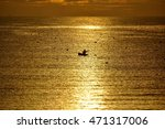 A Fisherman In The Sea At Dawn...