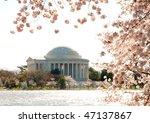 National Cherry Blossom...