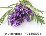 lavender  flower  field | Shutterstock . vector #471500036