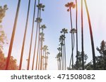 palm trees with vintage effect | Shutterstock . vector #471508082