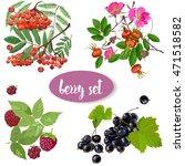 set with summer berries | Shutterstock .eps vector #471518582