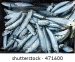 freshly caught sardines ... | Shutterstock . vector #471600