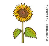 Sunflower Cartoon Floral...