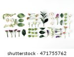 Stock photo roses pink flower buds branches and leaves isolated on white background flat lay top view 471755762