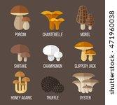 vector set of different kinds... | Shutterstock .eps vector #471960038