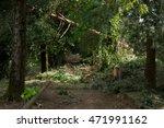 trees | Shutterstock . vector #471991162