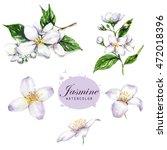 hand drawn watercolor... | Shutterstock . vector #472018396