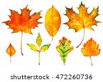 set of  hand painted watercolor ... | Shutterstock . vector #472260736