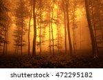 fantasy orange red autumn...   Shutterstock . vector #472295182
