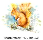 squirrel. decoration with... | Shutterstock . vector #472485862