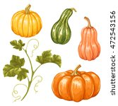 set of pumpkins. collection... | Shutterstock .eps vector #472543156