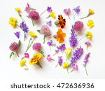 meadow flowers on white... | Shutterstock . vector #472636936