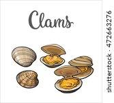 clams  mussels  seafood  sketch ... | Shutterstock .eps vector #472663276