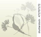 linden flowers vintage... | Shutterstock .eps vector #472707172