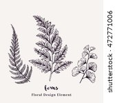 set with ferns. plants with... | Shutterstock .eps vector #472771006