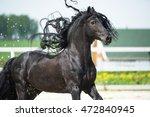 black friesian horse  portrain... | Shutterstock . vector #472840945