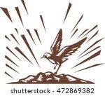 Illustration A Plover Bird...