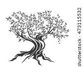 elegant olive tree isolated... | Shutterstock .eps vector #473115532